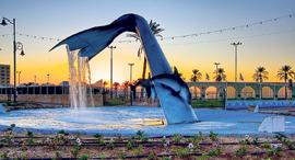 מוסף שבועי 21.3.19 כיכר קרית ים, צילום: שרון ינאי