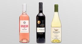 הזוכים הבולטים בתחרות היין BEST VALUE, צילומים: דיויד סילברמן