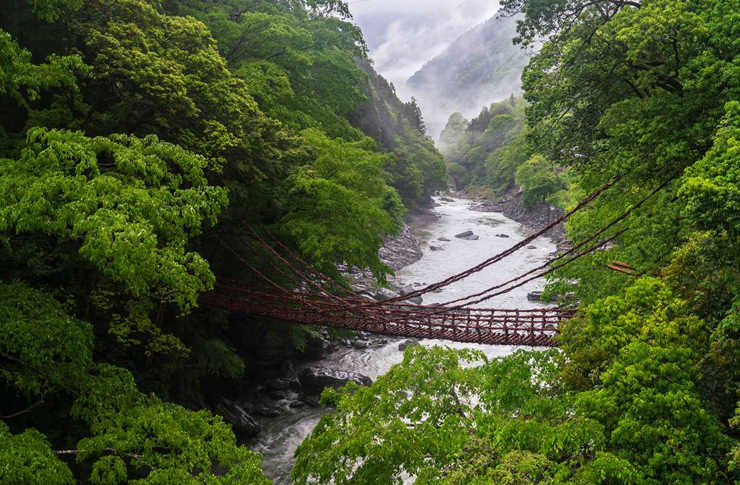 טרק 88 Temple Pilgrimage ביפן, צילום: Japan Travel and I