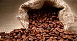 פולי קפה, צילום: שאטרסטוק