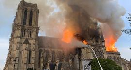 השריפה בנוטרדאם, צילום: איי אף פי