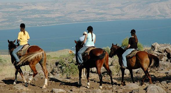 רוכבים על סוסים (ארכיון), צילום: גליה ינובסקי