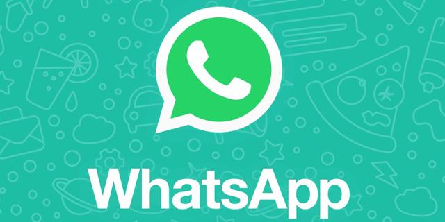 ווטסאפ, המתחרה הישירה לטלגרם, צילום: Whatsapp