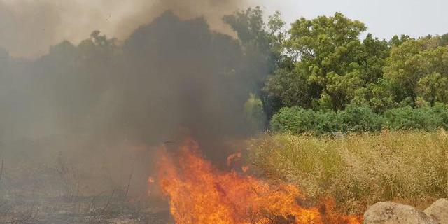 """גל השריפות נמשך: """"נערכים לסיוע אווירי בינלאומי"""""""