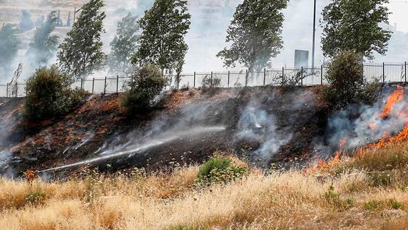 שריפה ליד מודיעין עילית, צילום: איי אף פי