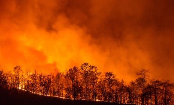 שריפות כתוצאה מהתחממות גלובלית