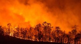 """שריפה שריפות קליפורניה ארה""""ב התחממות גלובלית, צילום: רויטרס"""