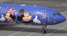 מטוס של דיסני, צילום: youtube