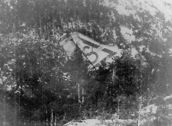 זנב מטוס B36 שהתרסק בניופאונדלנד