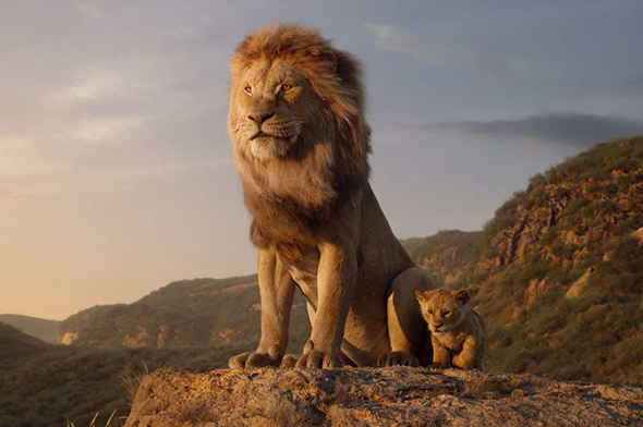 """מתוך """"מלך האריות"""". דיסני שברה שיאים בעולם ובארץ"""