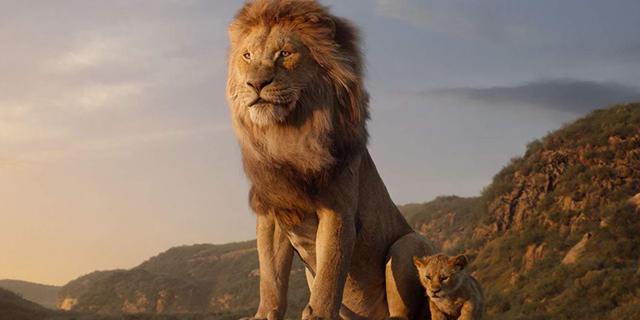 שאגת האריה: שוברי הקופות הגדולים של השנה החולפת בישראל