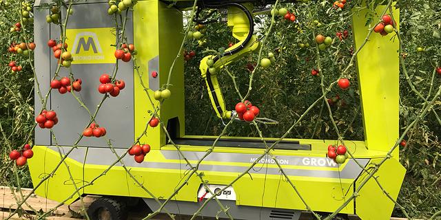 Tomato-Picking Robot Developer MetoMotion Raises $1.5 Million