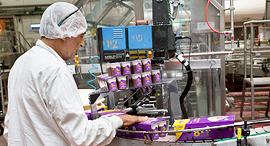עובדת במפעל, צילום: ענבל מרמרי
