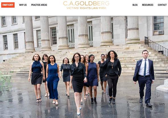 """אתר משרד העו""""ד של גולדברג. פוסטר יש, חסרה רק סדרה, צילום מסך: CA Goldberg"""
