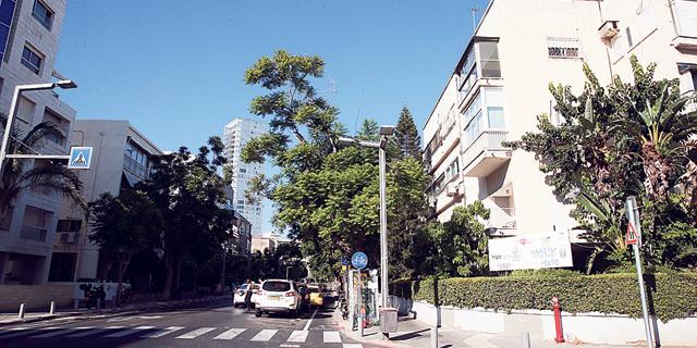 רחוב בתל אביב, צילום: אוראל כהן
