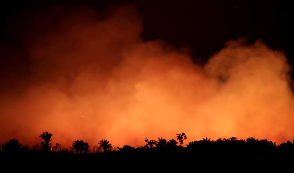 שריפות באמזונס, צילום: רויטרס