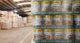 מפעל קבוצת יבנה חמוצים מלפפון חמוץ שימורים מוצרי מזון, צילום: עמית שעל