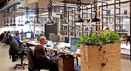 משרדים שטוחים משרדי Joy Tunes, צילום: אופיר אבסלנדר