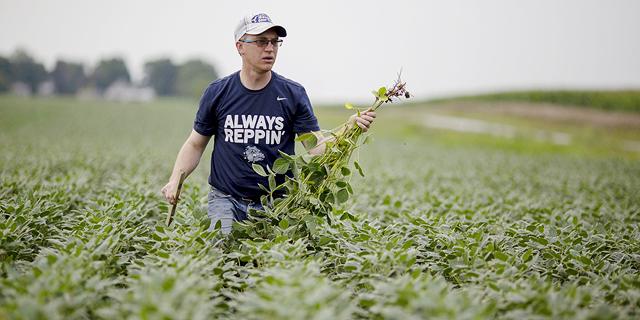 """ארה""""ב: סיוע בסך 19 מיליארד דולר לחקלאות בעקבות פגעי הקורונה"""