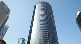 מגדל ספיר. שטחי המשרדים נמצאים בבעלויות פרטיות, ואין אחידות בדמי השכירות, צילום: אוראל כהן