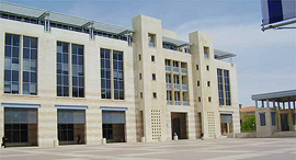 עיריית ירושלים זירת הנדלן, צילום: דר' אבישי טייכר, מתוך אתר פיקיויקי