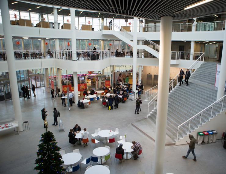 אוניברסיטת רקייאוויק איסלנד , צילום: גטי