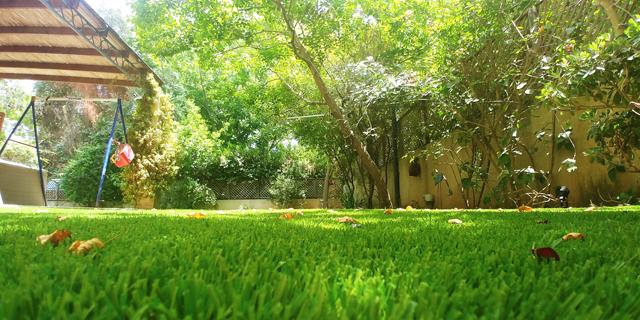 דשא סינטטי או דשא טבעי – הקרב הכלכלי