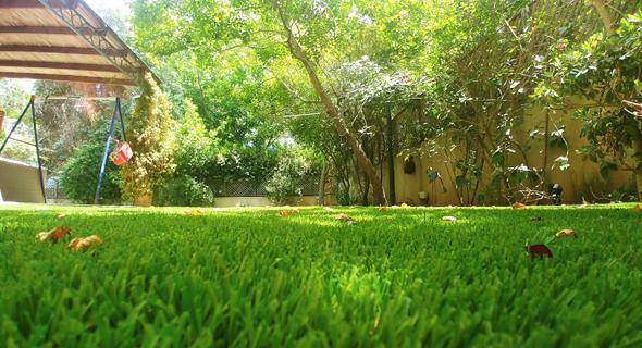 , צילום: באדיבות דשא קבוע
