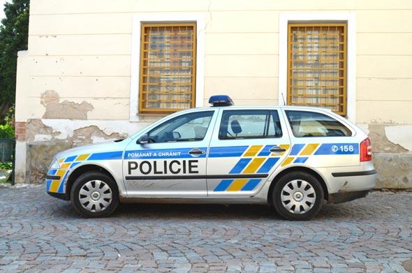 ניידת משטרה, צילום: שאטרסטוק