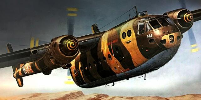 איור נורד לטיסה, צילום: Heller