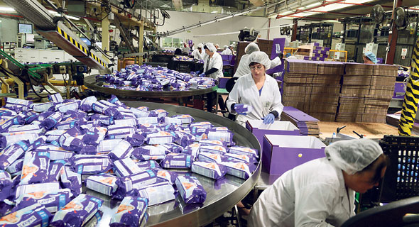 קו ייצור במפעל עלבד במשואות יצחק, צילום: אבי רוקח