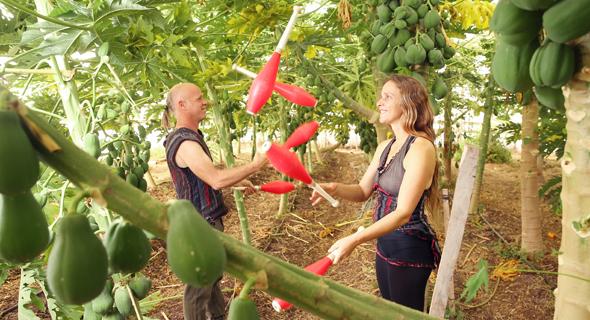 הקרקס החקלאי, צילום: אלעד גרשגורן