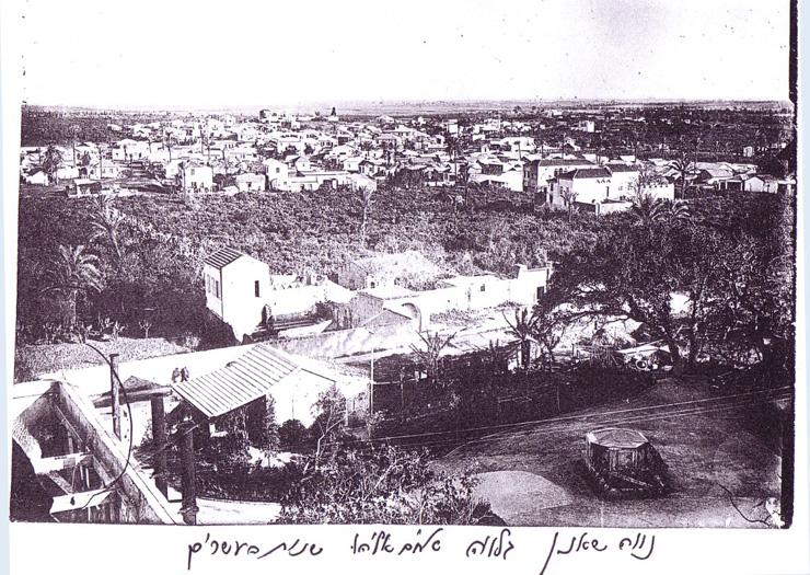 בית רוק על רקע שכונת נווה שאנן