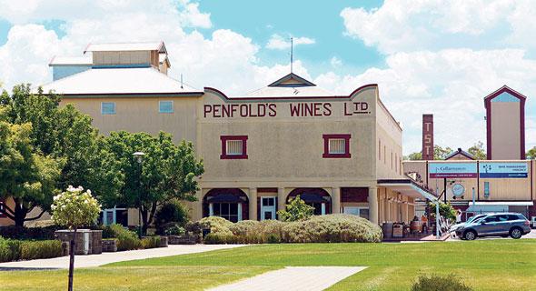 יקב פנפולדס. כבר לפני 100 שנה סיפק חצי מתצרוכת היין של אוסטרליה