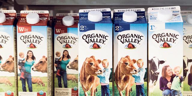 """תחליפים צמחיים חיסלו את יצרנית החלב הגדולה בארה""""ב"""