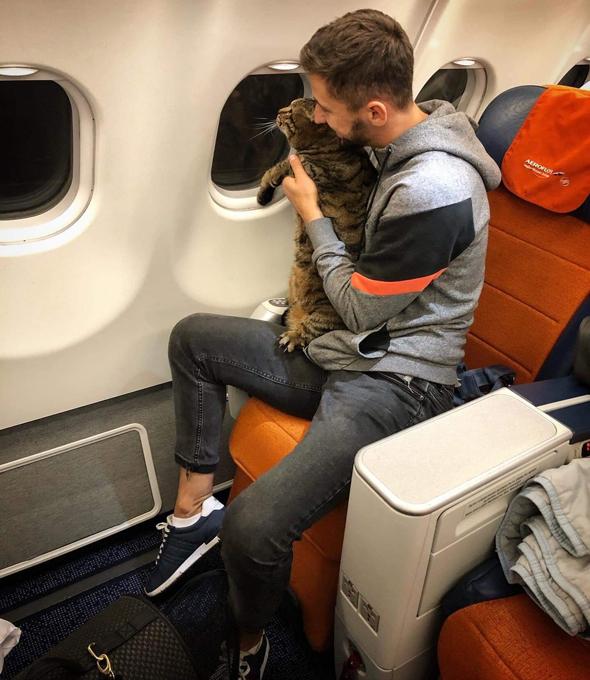 החתול ויקטור ובעליו מיכאיל גאלין על טיסת אירופלוט