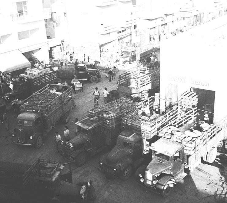 השוק הסיטונאי