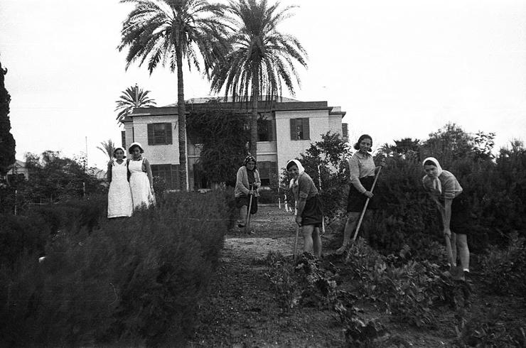 בשנות ה-20 המוקדמות נבנו חוות חקלאיות בשולי הערים