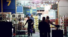 השוק הסיטונאי בצריפין, צילום: נמרוד גליקמן