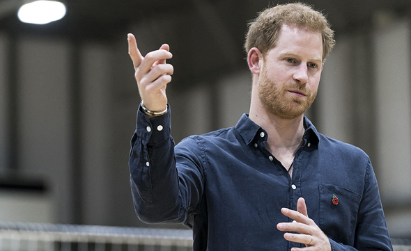 גם הנסיך הארי נתמך בפייסבוק, צילום: אם סי טי