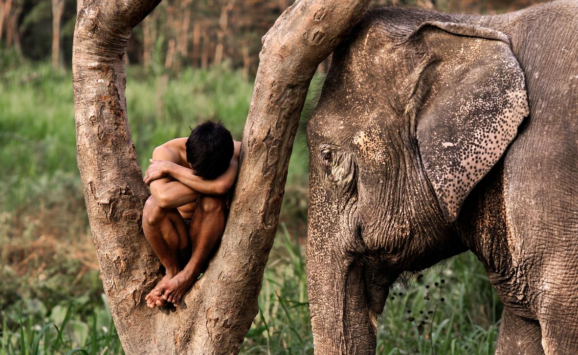 צילום: © Steve McCurry