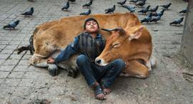 פוטו כלכליסט תמונות חיות ואנשים סטיב מקורי נפאל, צילום: © Steve McCurry