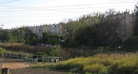 נווה שרת לוינשטין זירת הנדלן  , צילום: ORI (ויקיפדיה)