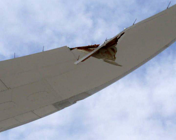 הכנף הפגועה