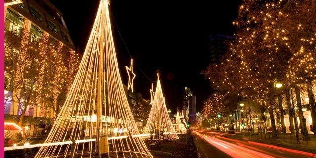 חג האורות: מופעי אורות מרהיבים מערים בעולם לכבוד כריסמס