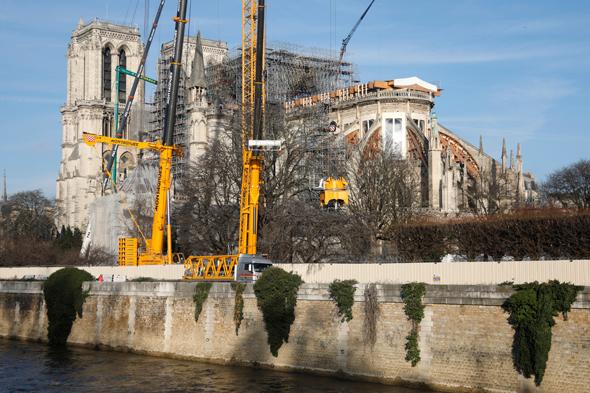 קתדרלת נוטרדם פריז שיקום פיגומים, צילום: רויטרס
