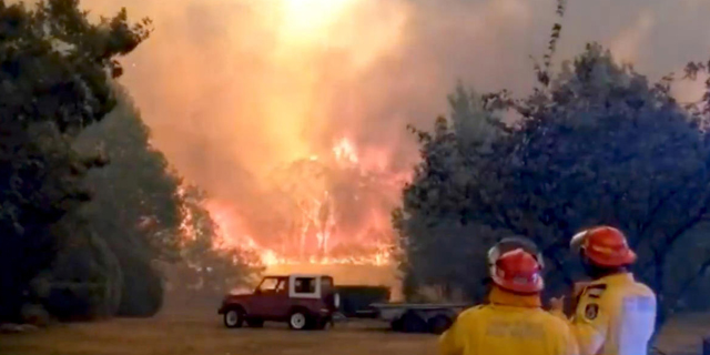 """""""ההתחממות הגלובלית מפעילות אנושית השפיעה ישירות על השריפות באוסטרליה"""""""