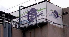 מפעל מעדני מיקי ב ראשון לציון, צילום: אלי דסה