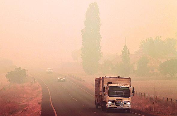 שריפה באוסטרליה, צילום: איי אף פי