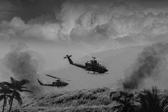 קוברות מעל וייטנאם